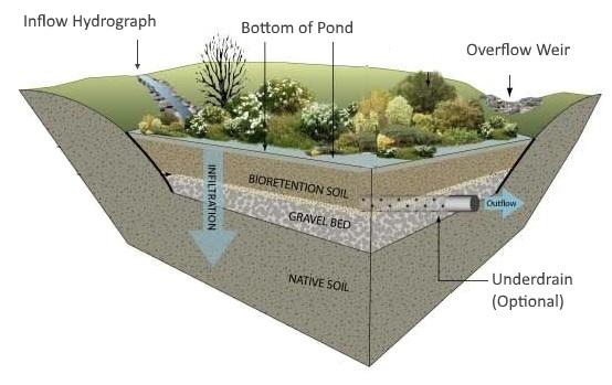 Bioretention pond design